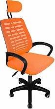 ihaushalt Ergonomic Adjustable Office Chair Swivel