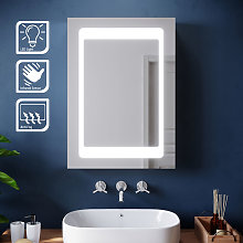 Illuminated LED Bathroom Mirror Cabinet Stainless