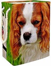 Indimization Dog Dog Frustrated laundry bin Oxford