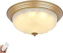 Indoor Dimmable Ceiling Light 3000K-6000K