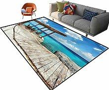 Indoor Room Coastal Area Rugs,4'x