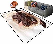 Indoor Room Pug Area Rugs,3'x 5',Upset Dog