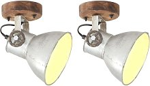 Industrial Wall/Ceiling Lamps 2 pcs Silver 20x25