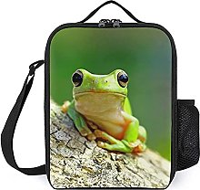 Insulated Lunch Bag Green Frog Lunch Box Portable