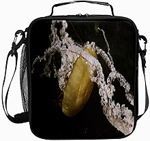 Insulated Lunch Bag Jellyfish Brown White Aniaml