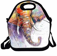 Insulated Lunch Box Bags Soft Cooler Tote for