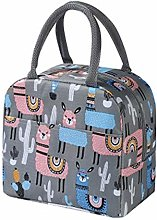 Insulated Picnic Carrying Box Large Size Canvas