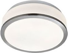 Ip44 Satin Silver 2 Light Flush Fittings With Opal
