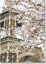 Italy Amalfi Coast Flower Paris Tower Landscape