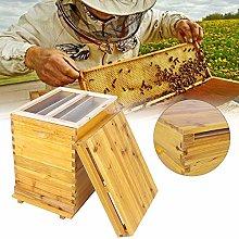 Jacksking Beehive, Cedar Wood Honey Keeper Beehive