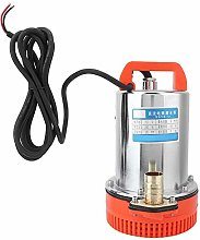 Jacksking Water Pump, DC 12V Submersible Deep Well