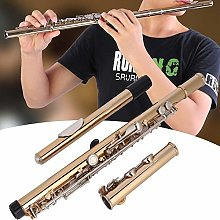 Jadpes 16-hole C-tune Flute, Gold Plated 16 Hole C
