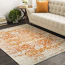 Janine Orange and Beige Updated Traditional Area