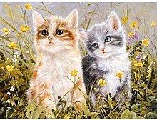 JDSHFJ Diy Canvas Oil Painting Kit Diy Number