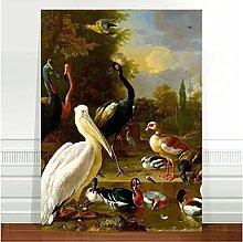 Jhmjqx Vintage Bird Art Birds of the world~ FINE
