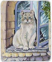 JinDoDo Blanket Watercolor Animal Cat Throw