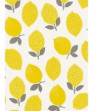 John Lewis & Partners Lemons PVC Tablecloth Fabric
