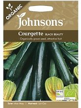 Johnsons Organic Courgette Seeds - Black Beauty