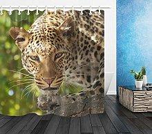 Jungle Leopard Staring Pattern High-definition