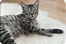 Jupsero Bathroom Rugs Bath Mat - Cat Door Mats
