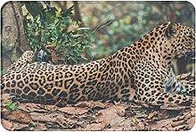 Jupsero Bathroom Rugs Bath Mat - Leopard Resting