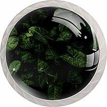 KAMEARI Round Cabinet Knob Green Leaves Set of 4