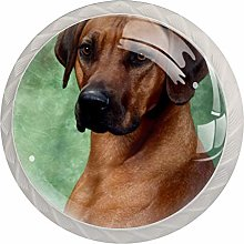 KAMEARI Round Cabinet Knob Rhodesian Ridgeback Dog
