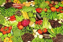 Karina Home Vegetables Vinyl Table Cover