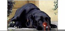 KAZOGU Black Labrador Placemats Set of 4 Washable