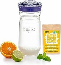 Kefirko Complete Water KEFIR Starter Kit 1400ml