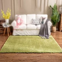 KERPAL Thick Pile Shaggy Rug, Modern Rugs Living