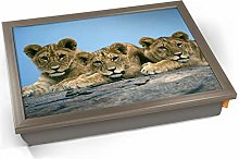 KICO Lion Cubs Cute Baby Animal Africa Cushioned