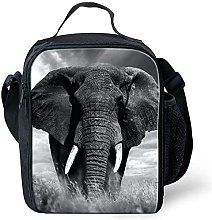 Kids Packed Lunch Bags Insulated Small Cooler