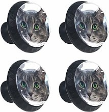 Kitchen Cabinet Knobs - Animal Gray Cat - Knobs