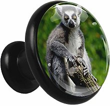 Kitchen Cabinet Knobs Animal Lemur Wardrobe Knobs