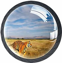 Kitchen Cabinet Knobs - Bengal Tiger in Natural
