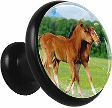 Kitchen Cabinet Knobs Brown Horse Wardrobe Knobs