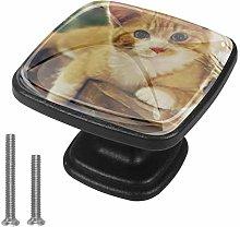 Kitchen Cabinet Knobs - cat - Knobs for Dresser