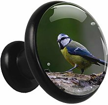 Kitchen Cabinet Knobs Colored Feather Bird