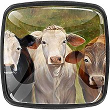Kitchen Cabinet Knobs - Cow Painting - Knobs for