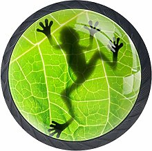 Kitchen Cabinet Knobs - Frog Shadow On The Leaf