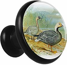 Kitchen Cabinet Knobs Hand Painted Duck Wardrobe