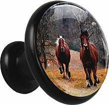 Kitchen Cabinet Knobs Horse Running Wardrobe Knobs