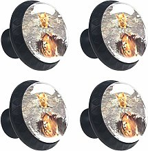 Kitchen Cabinet Knobs - Lion Shadow cat Pattern