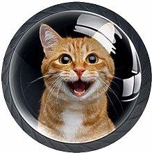 Kitchen Cabinet Knobs - Lovely Orange Cat - Knobs