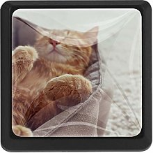 Kitchen Cabinet Knobs - Orange Cat Sleeping -