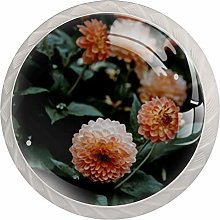 Kitchen Cabinet Knobs - Orange Petaled Flowers -
