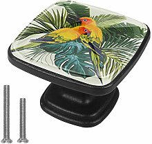Kitchen Cabinet Knobs - Parrots - Knobs for