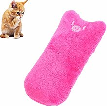 Kitten Toys Pet Toys Interactive Cat Toy Kitten