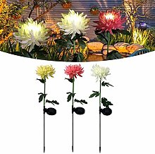 KKDS 3pcs Led Solar Chrysanthemum Light,Spring